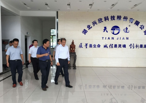 Wang Li, secretary of the Ezhou Municipal Party Committee, visited Hubei Xingxin to investigate the party building situation