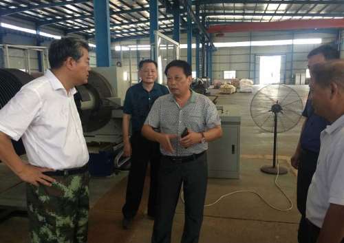 Secretary of the Ezhou Municipal Committee Li Bing came to visit our company